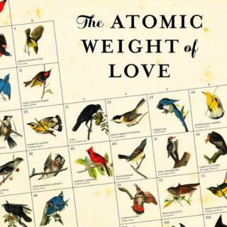 The Atomic Weight of Love by Elizabeth J Church