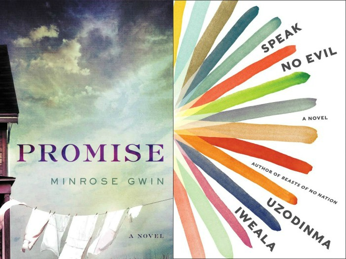 Promise by Minrose Gwin and Speak No Evil by Uzodinma Iweala