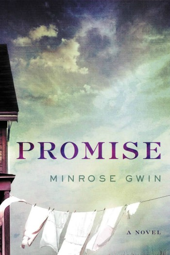 Novel Visits Review: Promise by Minrose Gwin