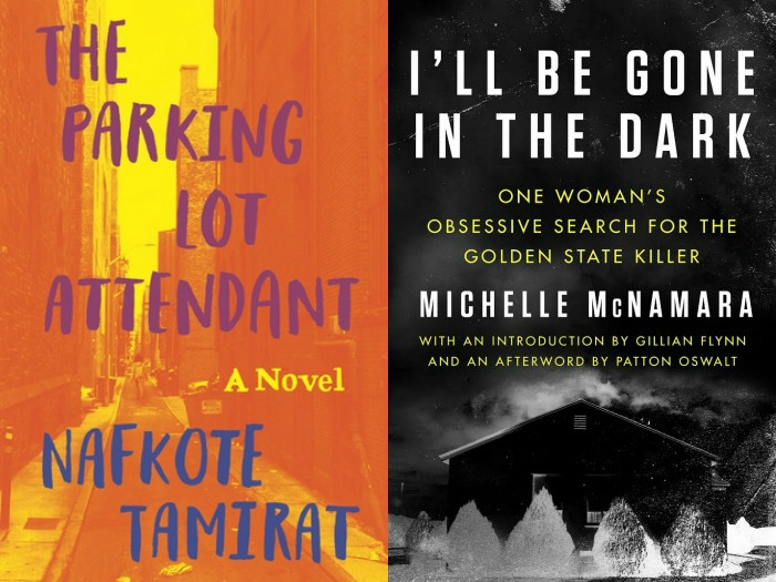Novel Visits: The Parking Lot Attendant by Nafkote Tamirat and I'll Be Gone in the Dark by Michelle McNamara