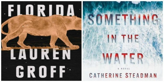 Novel Visits My Week in Books for 5/21/18: DNF Books - Florida by Lauren Groff and Something in the Water by Catherine Steadman