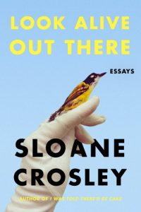 Novel Visits Review: Look Alive Out There by Sloane Crosley