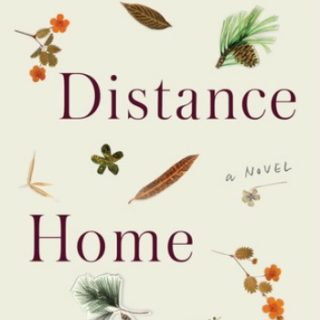 The Distance Home by Paula Saunders | Review