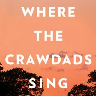 Novel Visits' Review of Where the Crawdads Sing by Delia Owens