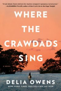 Novel Visits' BEST BOOKS of 2018 - Where the Crawdads Sing by Delia Owens