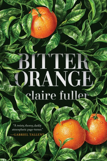 Novel Visits' Review of Bitter Orange by Claire Fuller