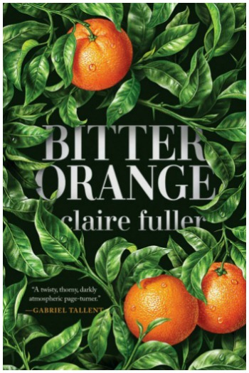 Novel Visits' My Week in Books for 10-8-18: Last Week's Read - Bitter Orange by Claire Fuller