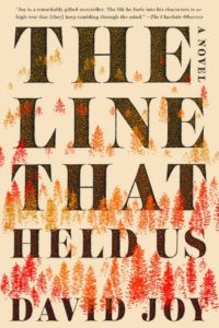 Novel Visits' BEST BOOKS of 2018 - The Line That Held Us by David Joy