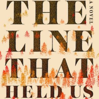 Novel Visits' Review of The Line That Held Us by David Joy