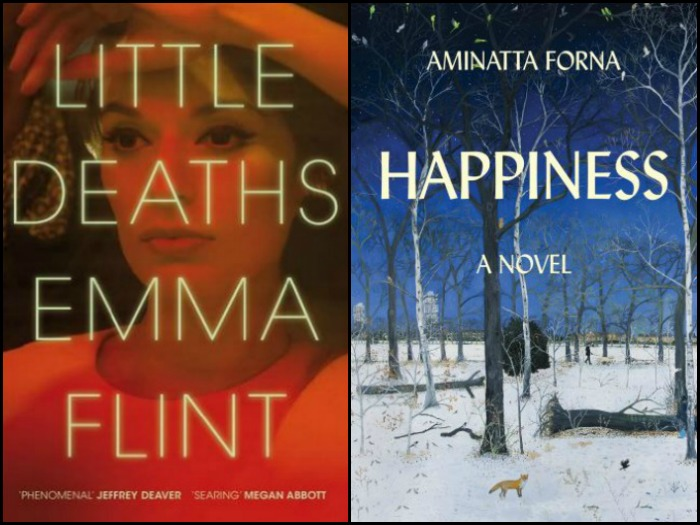 Novel Visits' My Week in Books for 12/10/18: Currently Reading - Little Deaths by Emma Flint and Happiness by Aminatta Forna