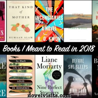 Novel Visits' Books I Meant to Read in 2018
