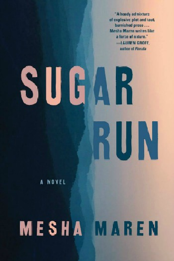 Novel Visits' My Week in Books for 1/21/19: Currently Reading - Sugar Run by Mesha Maren