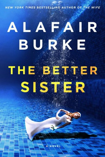 Novel Visits' Review of The Better Sister by Alafair Burke