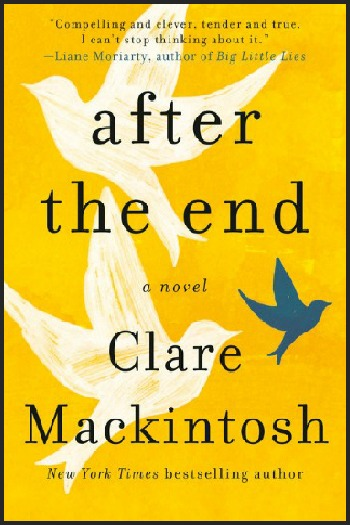 Novel Visits' My Week in Books for 6/24/19: Last Week's Read - After the End by Clare Mackintosh
