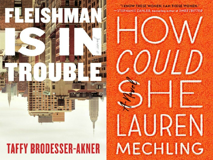 Novel Visits' My Week in Books for 6/10/19: Likely to Read Next - Fleishman is in Trouble by Taffy Brodesser-Akner and How Could She by Lauren Mechling