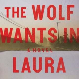 Novel Visits' Review of The Wolf Wants In by Laura McHugh