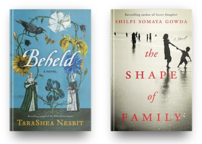 Beheld by TaraShea Nesbit and The Shape of a Family by Shilpi Somaya Gowda