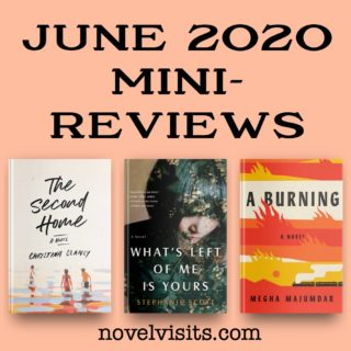 Novel Visits' June Mini-Reviews ~ A Trio of Fiction!
