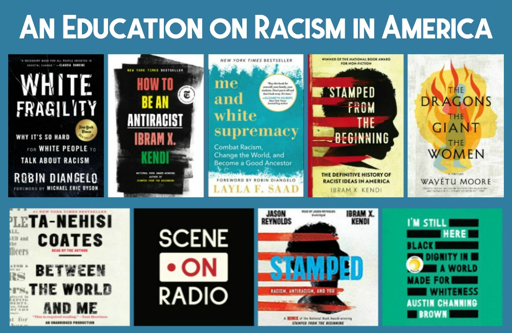 Novel Visits - An Education on Racism in America