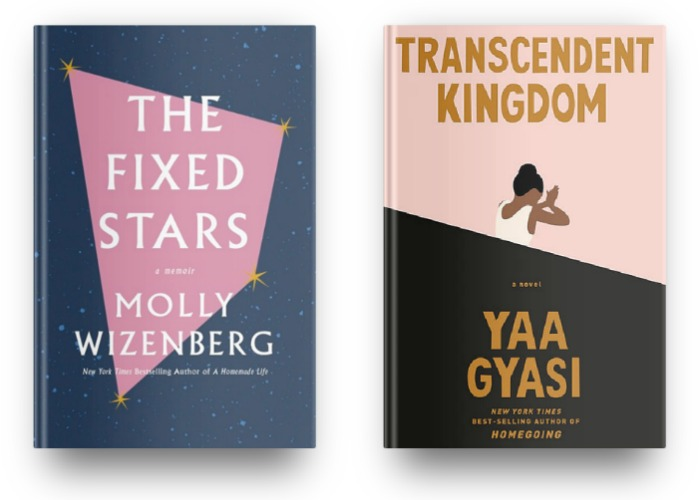 The Fixed Stars by Molly Wizenberg and Transcendent Kingdom by Yaa Gyasi