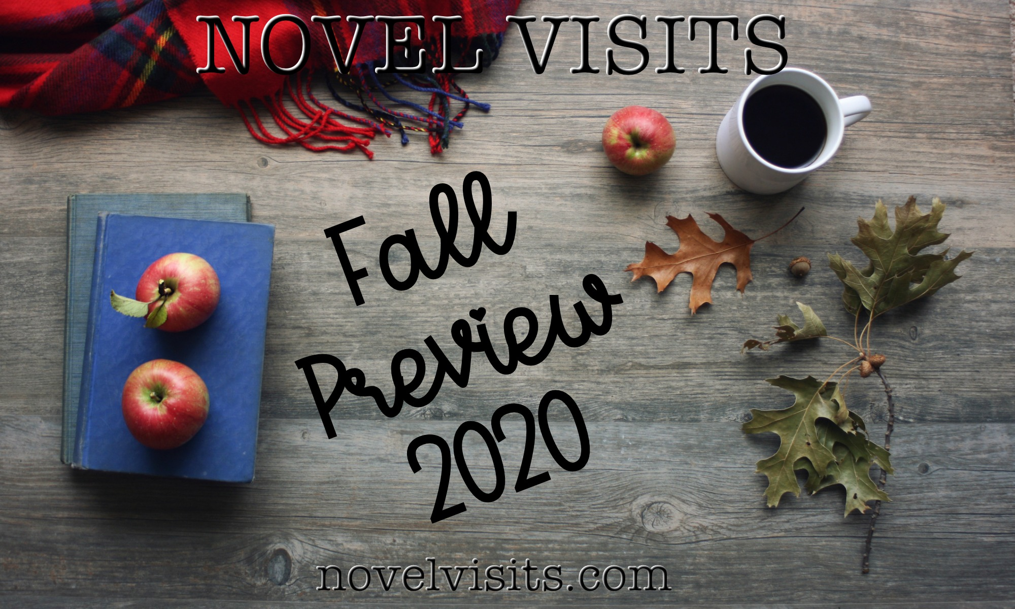 Novel Visits' Fall Preview 2020