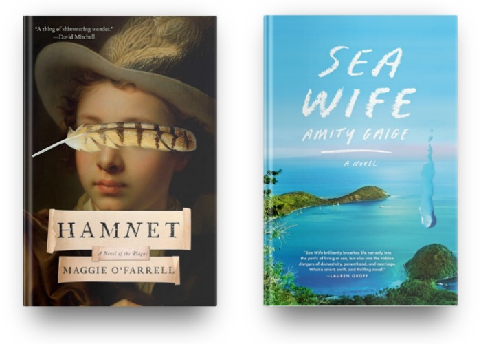 Hamnet by Maggie O'Farrell and Sea Wife by Amity Gaige