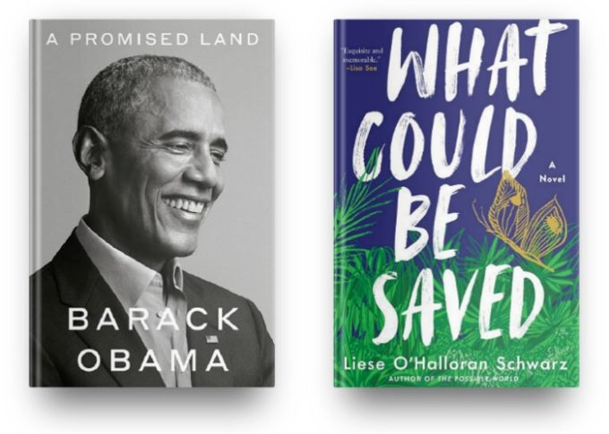 A Promised Land by Barack Obama and What Could be Saved by Liese O'Hallaron Schwarz