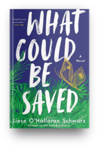 What Could be Saved by Liese O'Halloran Schwarz