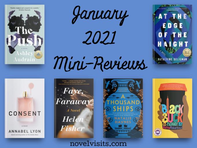 Novel Visits' January Mini-Reviews