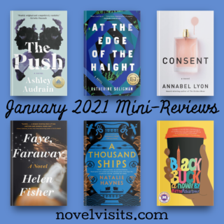 Novel Visits' January Mini-Reviews