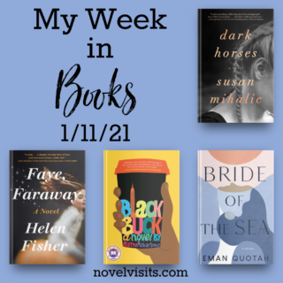 Novel Visits' My Week in Books for 1/11/21