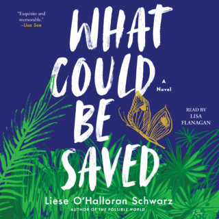 Novel Visits' Review of What Could be Saved by Liese O'Halloran Schwarz