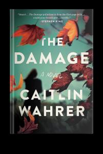 The Damage by Caitlin Wahrer (via Novel Visits)